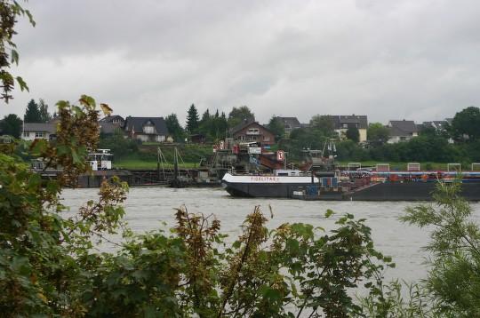 Fidelitas aground Rhine