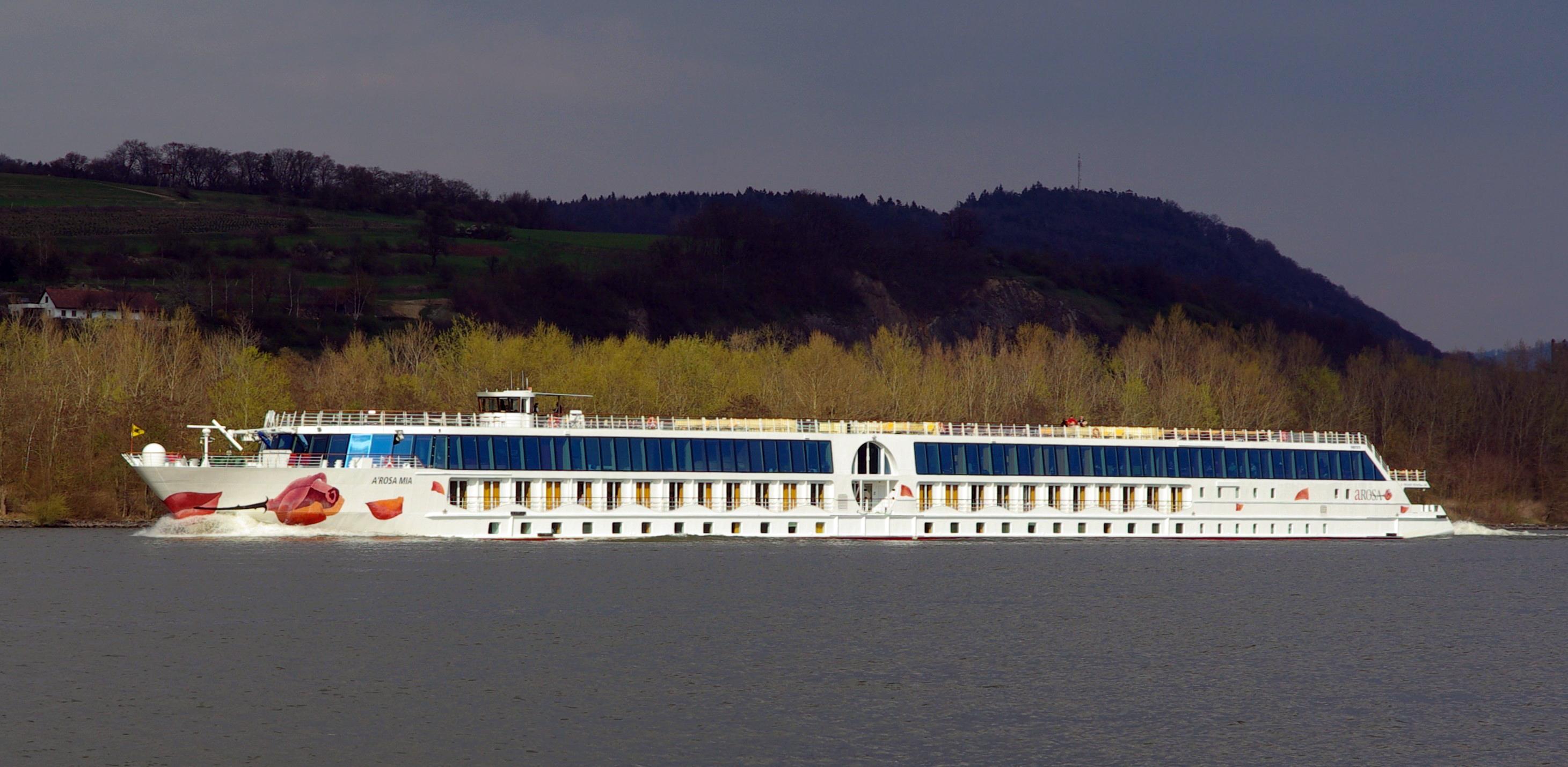 aRosa Mia Shipwreck Danube Allision