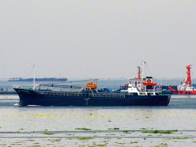 Sea Merchant