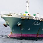 Kiyosato Maru